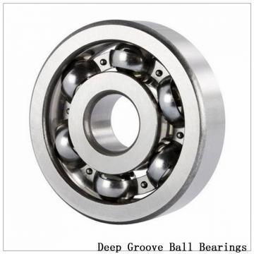 60/500F1 Deep groove ball bearings